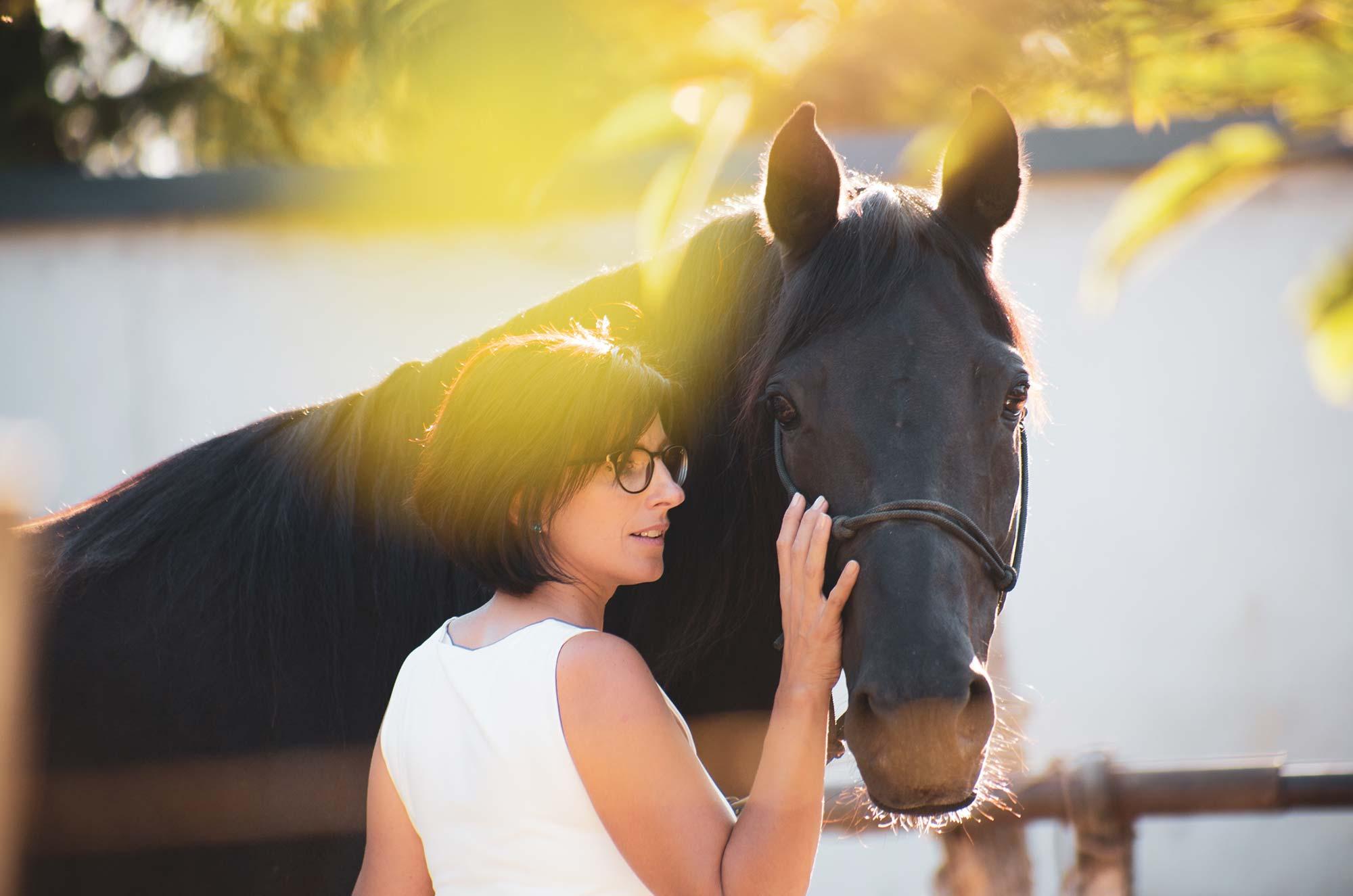 Link zur Seite Pferde-gestütztes Training